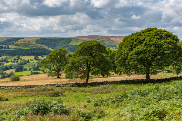 Looking out to Eyam Moor