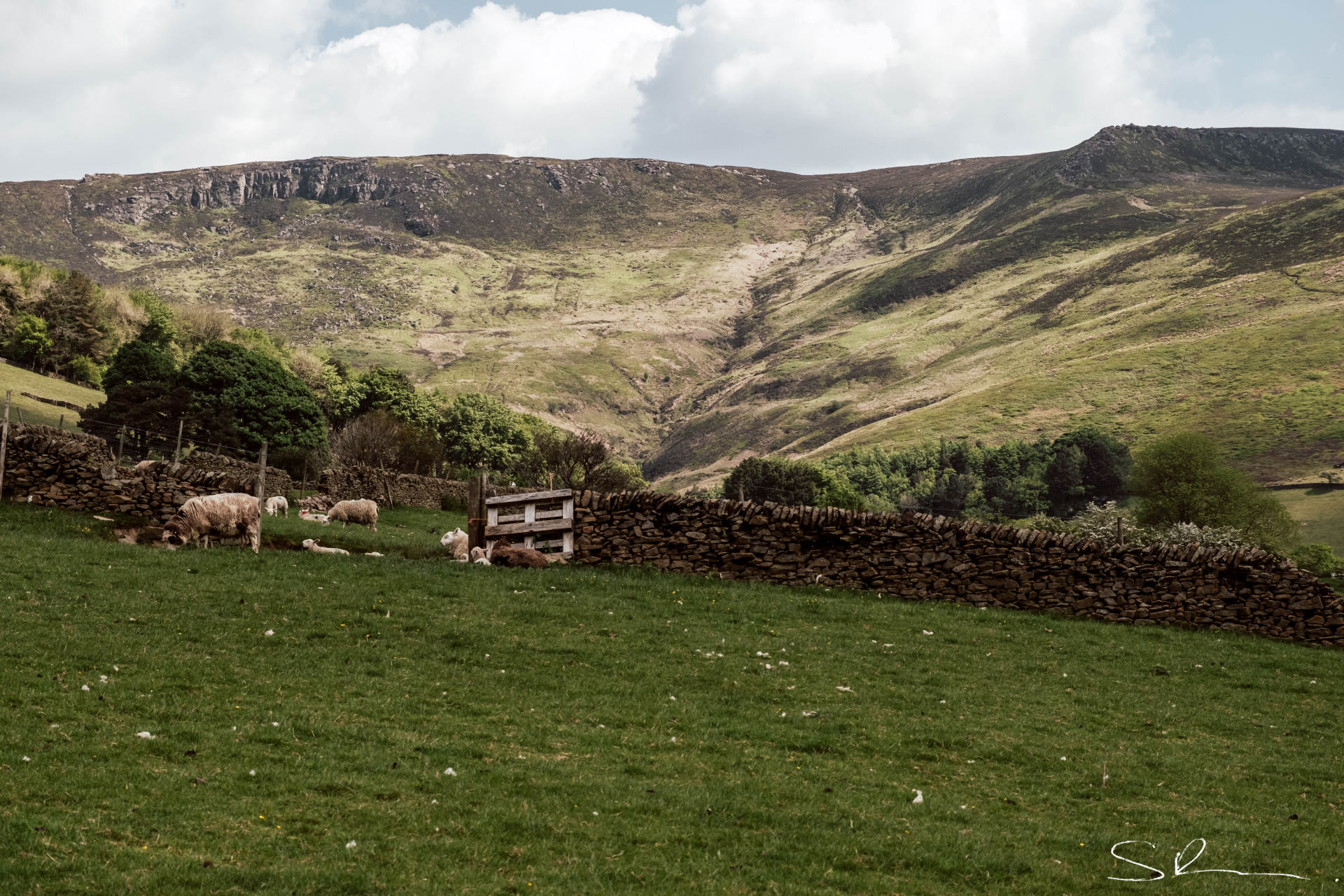 Looking to Kinder Scout